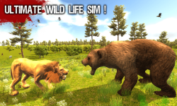 Wild Life - Lion screenshot 1/6