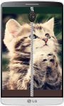 Kitten Zipper Lock Screen HD screenshot 1/4