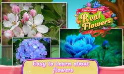 Educational Game Real Flowers screenshot 3/6