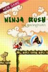 Ninja Rush screenshot 1/1