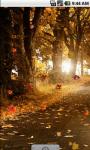 Autumn Road Cool Live Wallpaper screenshot 2/4