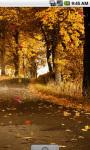 Autumn Road Cool Live Wallpaper screenshot 3/4