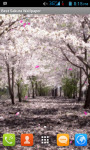 Sakura Flower Live Wallpaper Free screenshot 1/5