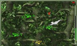 Crazy Jungle Games screenshot 2/4