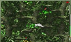 Crazy Jungle Games screenshot 3/4