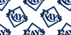 Tampa Bay Rays Fan screenshot 4/4