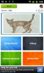 Cat Quiz screenshot 3/5