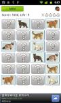 Cat Quiz screenshot 4/5