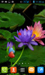 Water Lilies Live Wallpaper Free screenshot 1/4