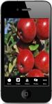 Fruit Trees screenshot 1/4