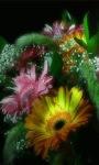 Lighting Flowers Live Wallpaper screenshot 1/3