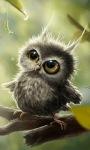Baby Owl Live Wallpaper screenshot 1/3