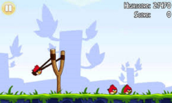 Angry Birds Survival New screenshot 2/6