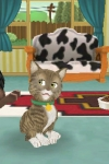 Touch Pets Cats screenshot 1/1