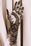 Famous Heena Mehandi Designs screenshot 2/5