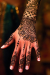 Famous Heena Mehandi Designs screenshot 3/5