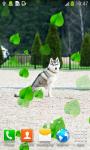 Husky Live Wallpapers screenshot 2/6