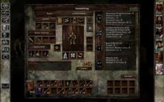 Icewind Dale Enhanced Edition special screenshot 2/6