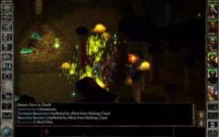 Icewind Dale Enhanced Edition special screenshot 6/6