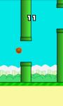 Flapping Cam screenshot 2/3