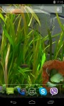 Aquarium Video HD Live Wallpaper screenshot 1/4