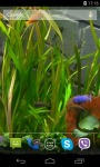 Aquarium Video HD Live Wallpaper screenshot 4/4