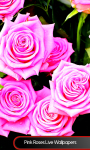 Pink Roses Live Wallpapers screenshot 1/6