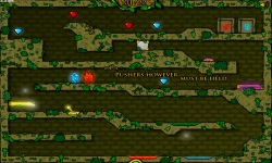 FireBoy And WaterGir in The Forest Temple screenshot 3/4