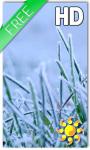 Winter Grass Live Wallpaper screenshot 1/2