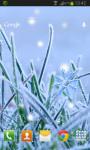 Winter Grass Live Wallpaper screenshot 2/2