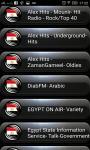 Radio FM Egypt screenshot 1/2
