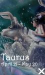 Taurus 240x320 Touch screenshot 1/1