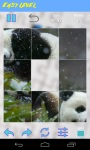 Panda Jigsaw Puzzle screenshot 4/6