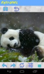 Panda Jigsaw Puzzle screenshot 5/6