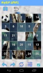 Panda Jigsaw Puzzle screenshot 6/6