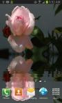 Beautiful Pink Rose Live Wallpaper free screenshot 1/3
