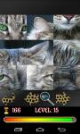 Puzzle Cats 2015 screenshot 2/4