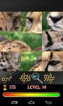 Puzzle Cats 2015 screenshot 3/4