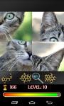 Puzzle Cats 2015 screenshot 4/4