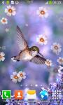 Hummingbirds Live Wallpapers screenshot 4/6