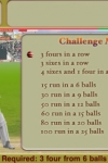Swing Cricket screenshot 1/1