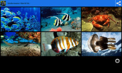 Underwater World Beauty Wallpapers screenshot 1/6