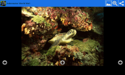 Underwater World Beauty Wallpapers screenshot 4/6