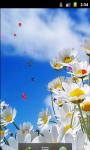 Daisy Flower Field Live Wallpaper screenshot 3/5