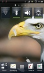Awesome Bald Eagle Live Wallpaper screenshot 1/3