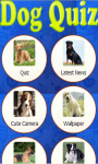 Dog Breed Quiz - Dogs Guide Training and Names screenshot 1/3