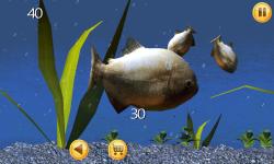 Piranha Aquarium 3D screenshot 1/6