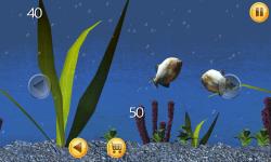 Piranha Aquarium 3D screenshot 3/6