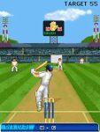 Cricket Championship Trophy 2007_xFree screenshot 4/4