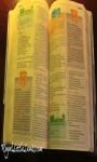 New Edition Bible screenshot 1/1
